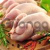 Halal Chiken (Халяль куры)