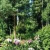 Продается дом 7-ком 366 м² деревня Липки