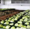 Воздухоохладитель для хранения сельскохозяйственной продукции