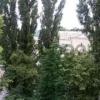Сдается в аренду квартира 2-ком 48 м² Украинки Леси ул., д. 14