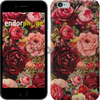Чехол на iPhone 7 Цветущие розы