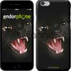 Чехол на iPhone 7 Чёрная кошка
