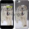 Чехол на iPhone 7 Бегущий волк