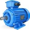 Электродвигатель 4АМН315М2