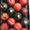 Продаем нектарин из Испании