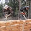 Строительство деревянных домов. Мастерами из Архангельска.