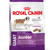Royal Canin Giant Junior (старше 8 месяцев) 15кг