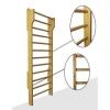 Гимнастические лестницы (шведская стенка)